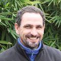 Tony Pellegrini