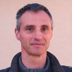 Thierry Laurent